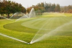Picture for category Lawn Irrigation and Synthetic Turf Cooling