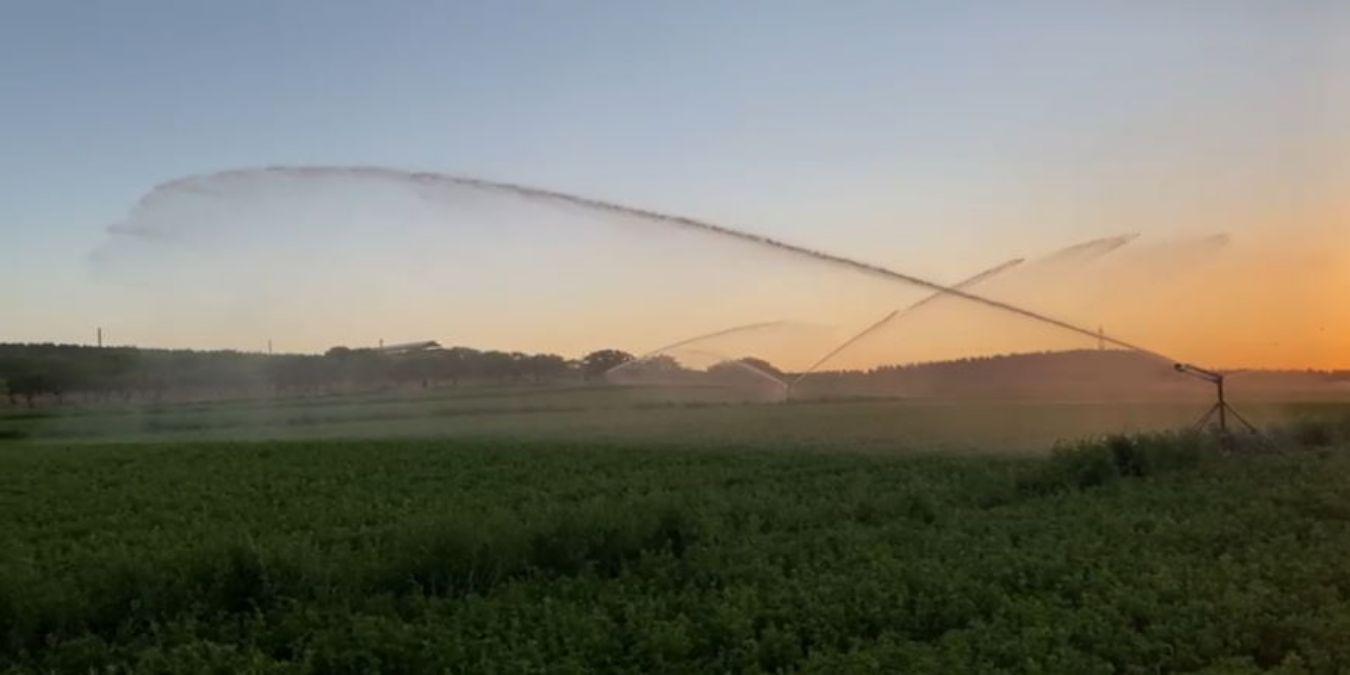 Soft hose travelling irrigators vs hard hose travelling irrigators